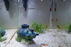 Aquarium werk