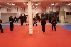 Kenpo Karate